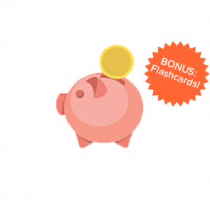 DSST piggy bank